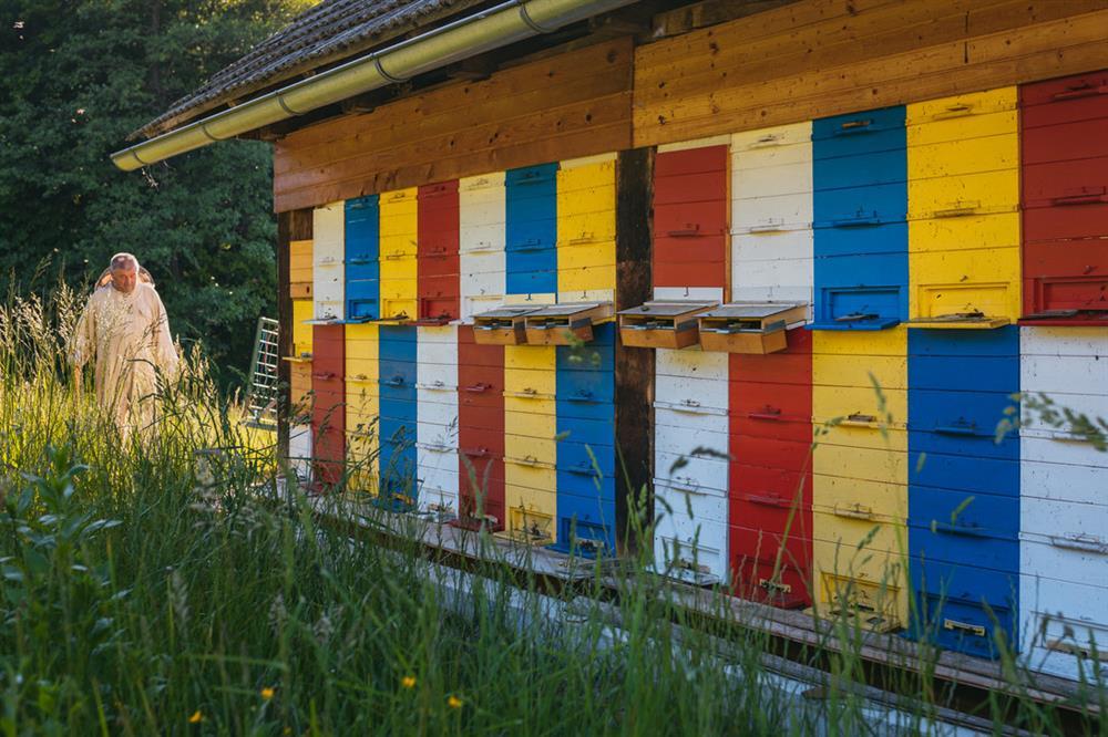 Čebelarstvo Ilek