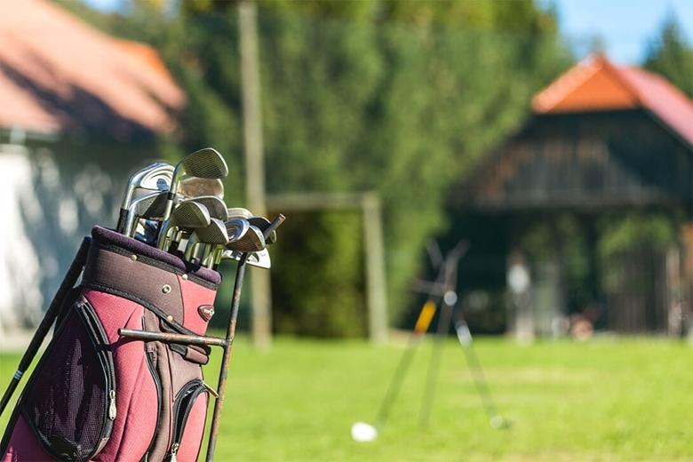 Picture of Igra golfa in okusno domače kosilo na Domačiji Amon