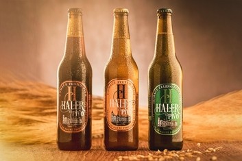 Picture of TASTING OF 4 BEERS AND A COLD CUT AT HALER'S